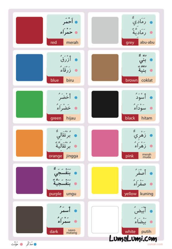 Poster Belajar Mengenal Warna Untuk Anak-Anak   Toko ...