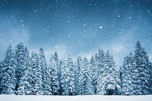 雪の結晶のスマホ壁紙 検索結果 1 画像数3009枚 壁紙com