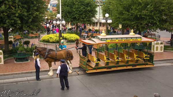 Disneyland Resort, Disneyland, Main Street U.S.A., Horse, Rain