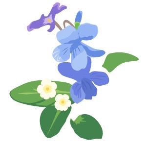 すみれ フリー素材かわいい花のイラストのまとめ個人商用利用