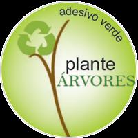 Descubra como plantar árvores agora mesmo!