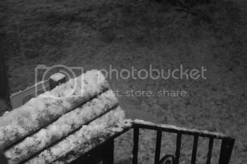 snow in minnesota