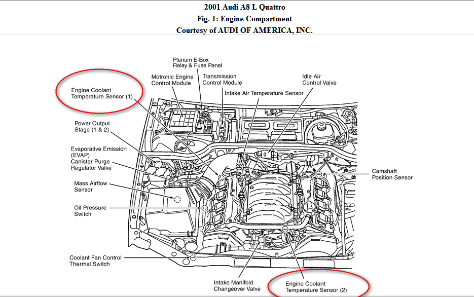 1999 Audi A8 Engine Diagram Wiring Diagram Frankmotors Es