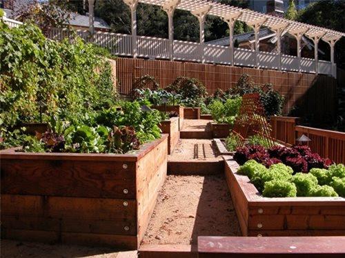 Kitchen Garden Design Ideas - Landscaping Network