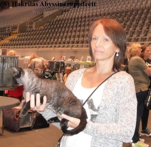 Min rasekattvenninne Hege (som er med i samme katteklubb som meg) med den kjempefine devon rex katten sin under nomineringen :)