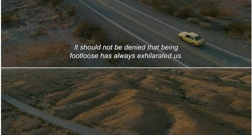 Into The Wild Quotes Quotes