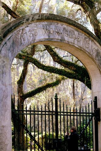 Wormsloe Plantation, Savannah, GA- 1
