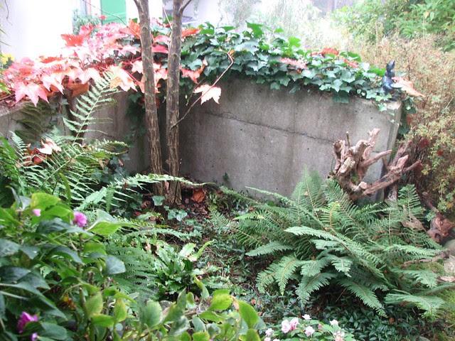ruth's garden