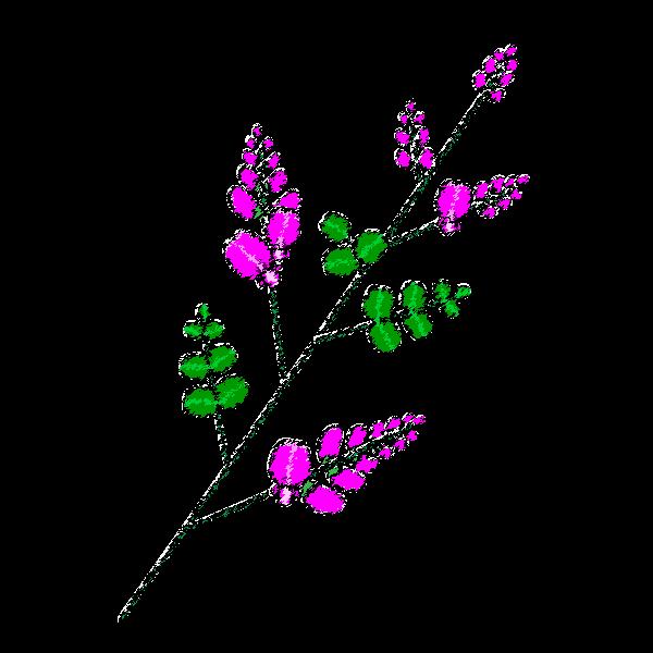秋の花 タグが付けられた記事一覧を表示しています オイデ43