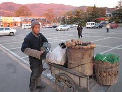 2010-11-15-IMG_0256