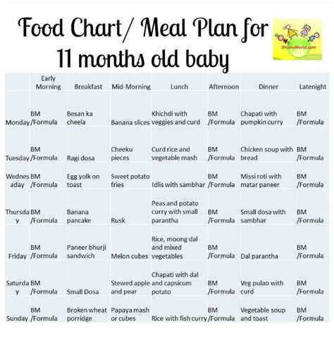food chart meal plan   months  baby shishuworld
