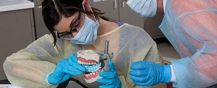 Dental Studies  Monroe Community College  Rochester, NY