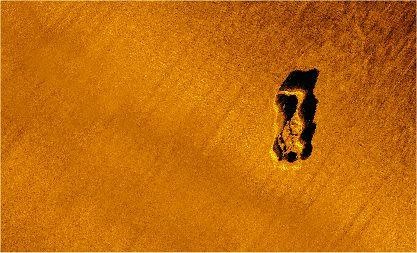 三浦半島沿岸の海底画像