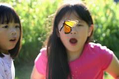 Girls in Awe as Monarch Flies Away