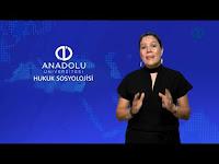 HUKUK SOSYOLOJİSİ - Ünite 1 - Konu Anlatımı 1 - Açıköğretim Sistemi - Anadolu Üniversitesi