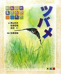 ツバメ (田んぼの生きものたち)