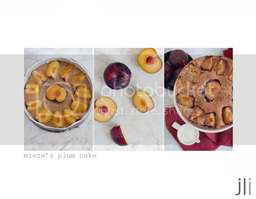 mieze's plum cake photo blog-1_zps7a668a74.jpg
