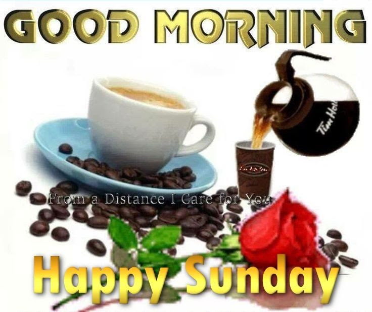 Good Morning Happy Sunday Quote Pictures Photos And Images For