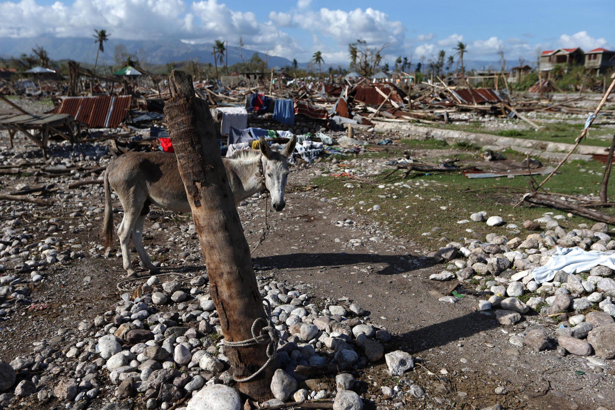 Destrucción tras el paso de Matthew en Haití.