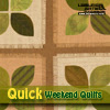 Quick Weekend Quilts