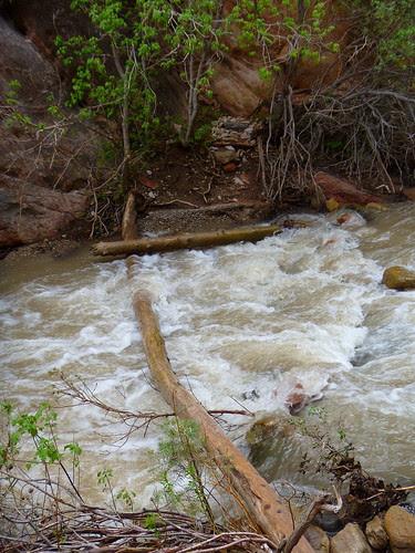 05.10.11 Kanarra Creek