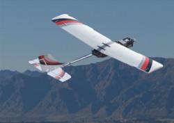 Autonomous UAV