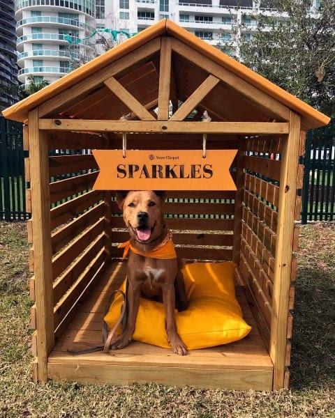 Top 60 Best Dog House Designs Contemporary Modern Pet Pads
