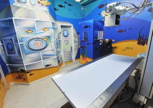 Fiocruz mostra que hospital pode ser agradável e acolhedor