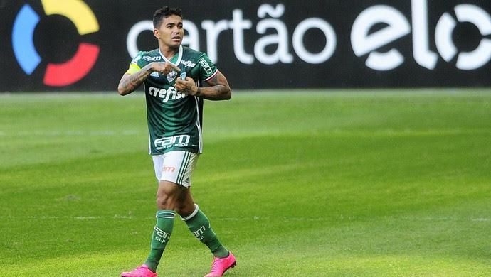 Dudu Palmeiras x Botafogo (Foto: Marcos Ribolli)