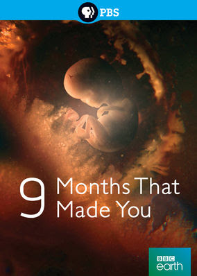 9 Months That Made You - Season 1