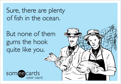 there are plenty more fish in the sea