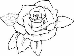 rose flower coloring pages at getcolorings  free printable colorings pages to print and color