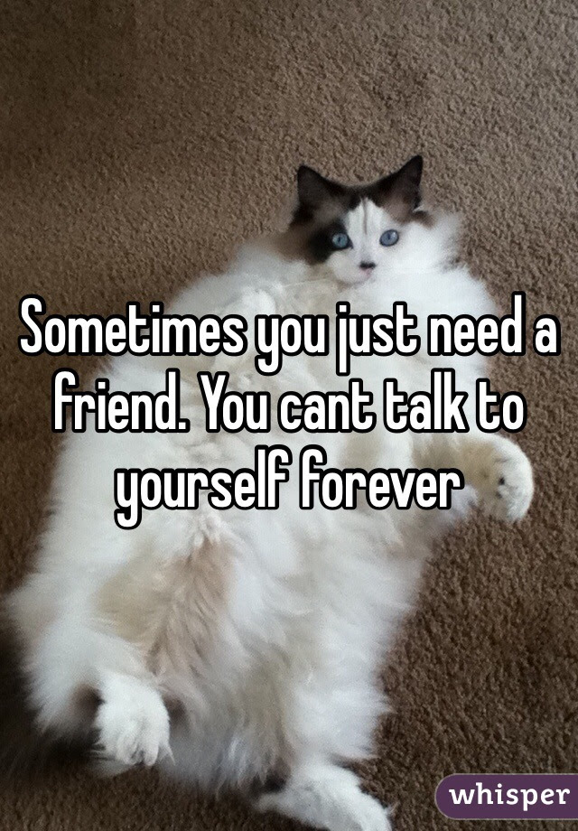 Sometimes You Just Need A Friend You Cant Talk To Yourself Forever