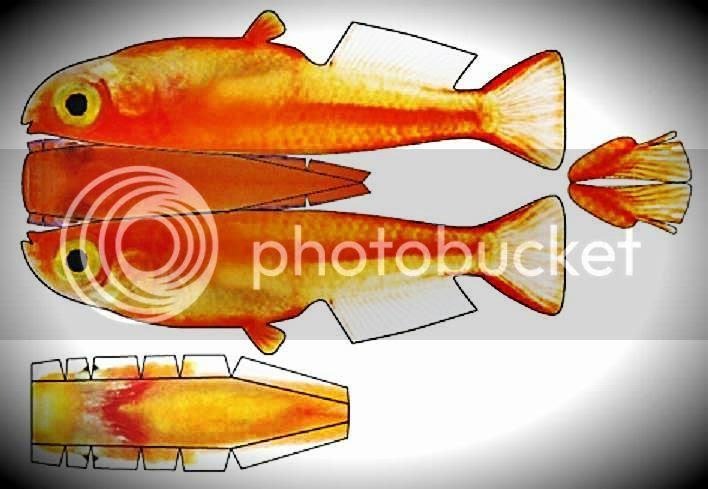 photo goldenfishkorea_zps9acebd16.jpg