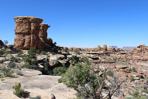 IMG_2730_Canyonlands_NP_Needles_District