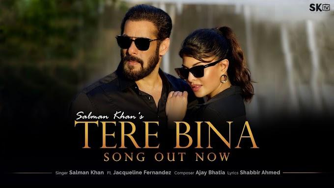 Tere Bina - Salman Khan Lyrics