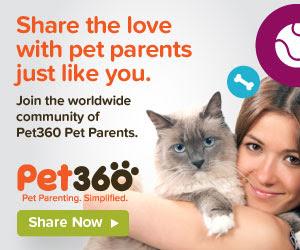 Pet360 Community