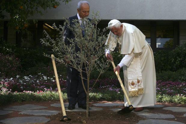 Pope Benedict XVI trồng cây oliu ở với TT Israel Shimon Peres tại dinh ở Jerusalem