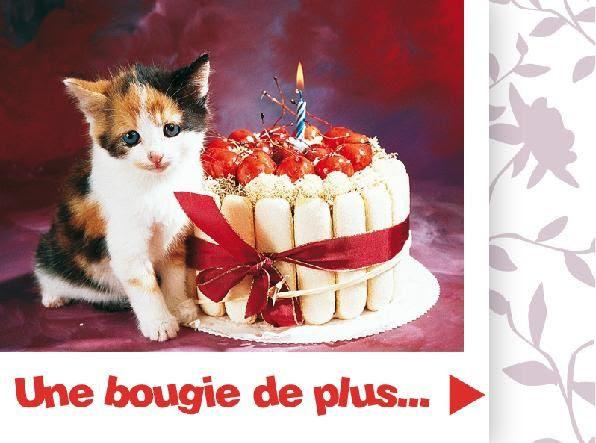 Carte Joyeux Anniversaire Avec Des Chats Wizzyloremaria Blog