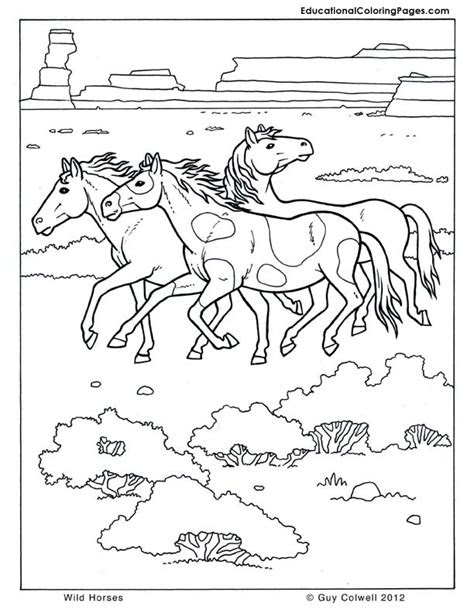 mammals book  animal coloring pages  kids