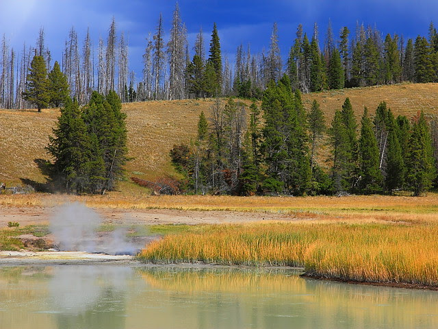 IMG_7420 Autumn Afternoon, Yellowstone National Park