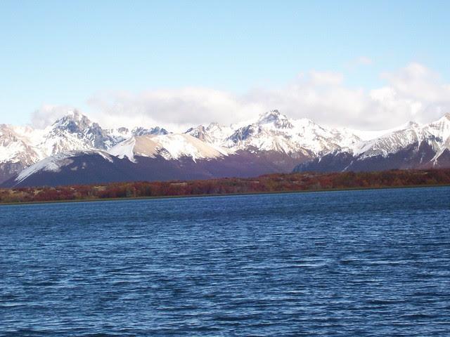 chubut, patagonia, argentina, pensinsula valdes, balene, foche, elefanti marini, otarie, pinguini