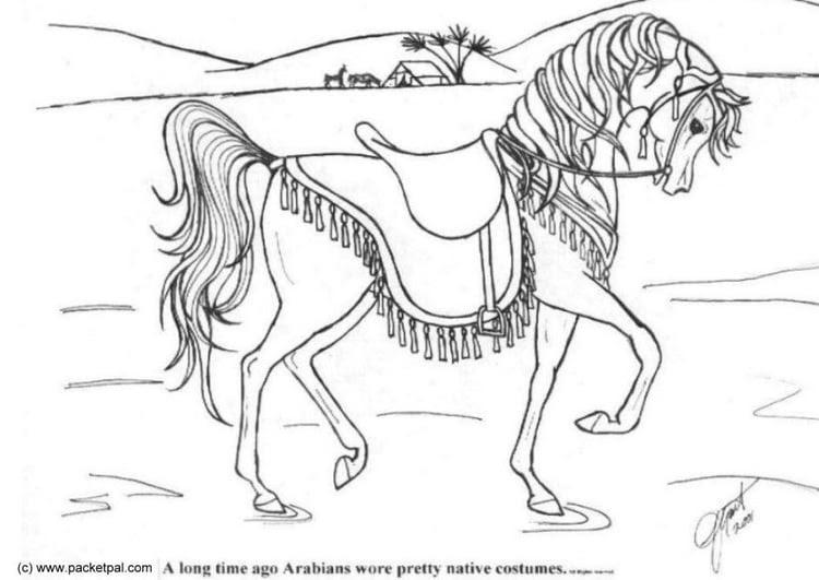Malvorlage Dressur Pferd   Ausmalbild 6087.