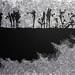 林羿束‧風的皺褶 I‧木刻版畫、油印手工棉紙‧ 62×39.5cm-15版‧2012