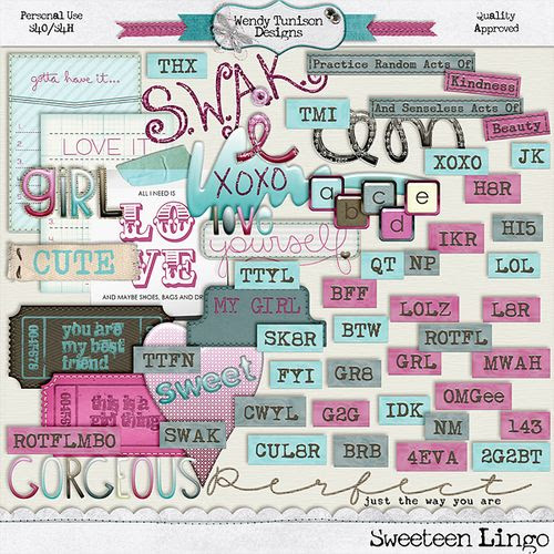 Wt_SsTn_lingo copy