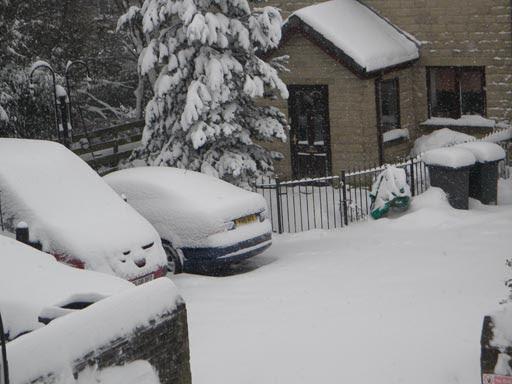 Snow 023-mar1.jpg