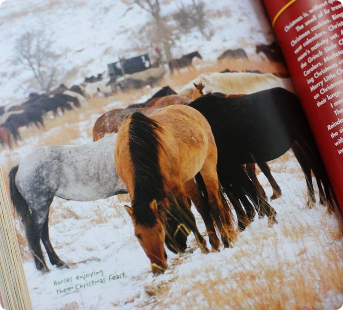 pioneer woman holidays horsies photo pioneerwomanholidaysbook6of8.jpg