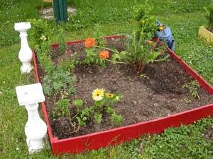 Un potager en carré avec des fleurs