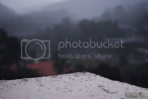 http://i599.photobucket.com/albums/tt74/yjunee/blogger/DSC_0020-1.jpg?t=1258576775