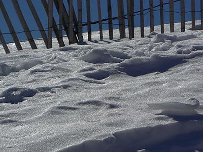 barreaux et neige.jpg